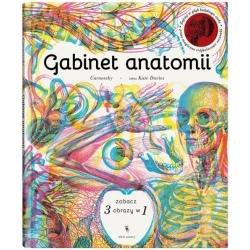 GABINET ANATOMII książka ciało człowieka
