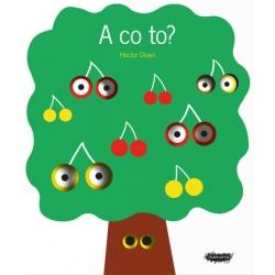 A CO TO? edukacyjna książeczka dla dzieci