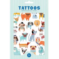 NATURA zestaw kolorowych tatuaży