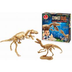 MAŁY ARCHEOLOG szkielety dinozaurów T-rex Velociraptor