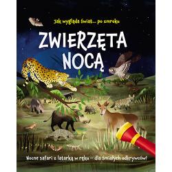 ZWIERZĘTA NOCĄ nocne safari z latarką w ręku książka Lisa Regan