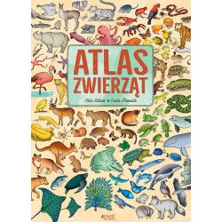 ATLAS ZWIERZĄT książka Febe Sillani, Paola Grimaldi