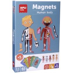 CIAŁO CZŁOWIEKA magnetyczna układanka
